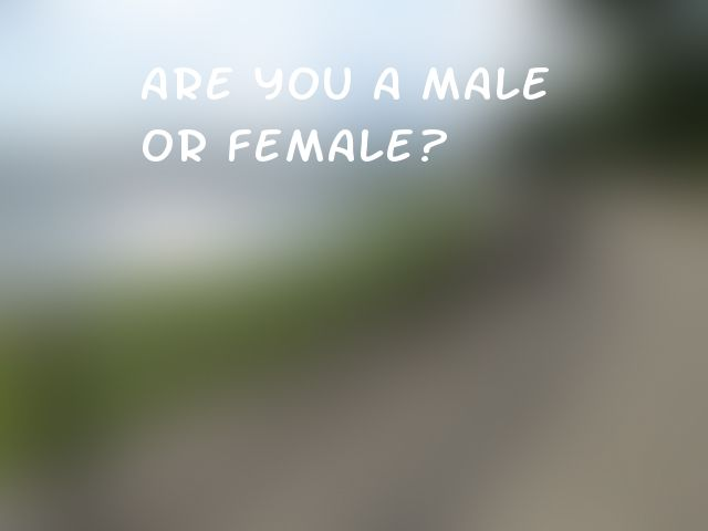 Are you a male or female?