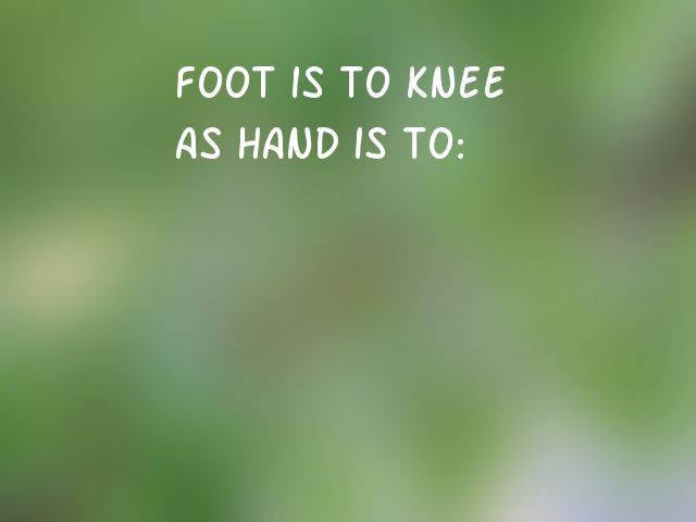 Foot is to knee as hand is to: