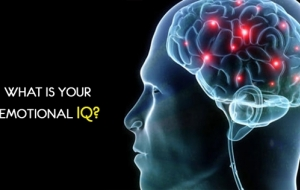 What is your emotional IQ?